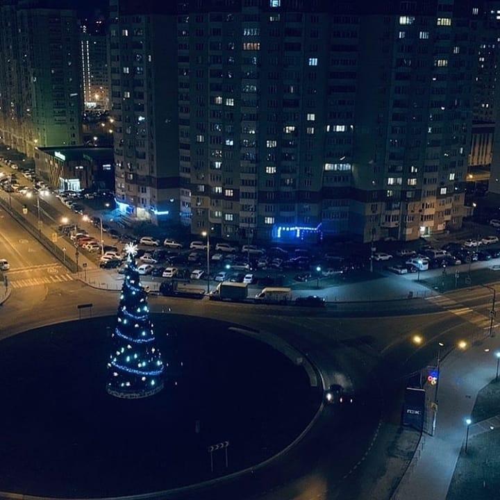 elka_krasnaya_gorka2.jpg